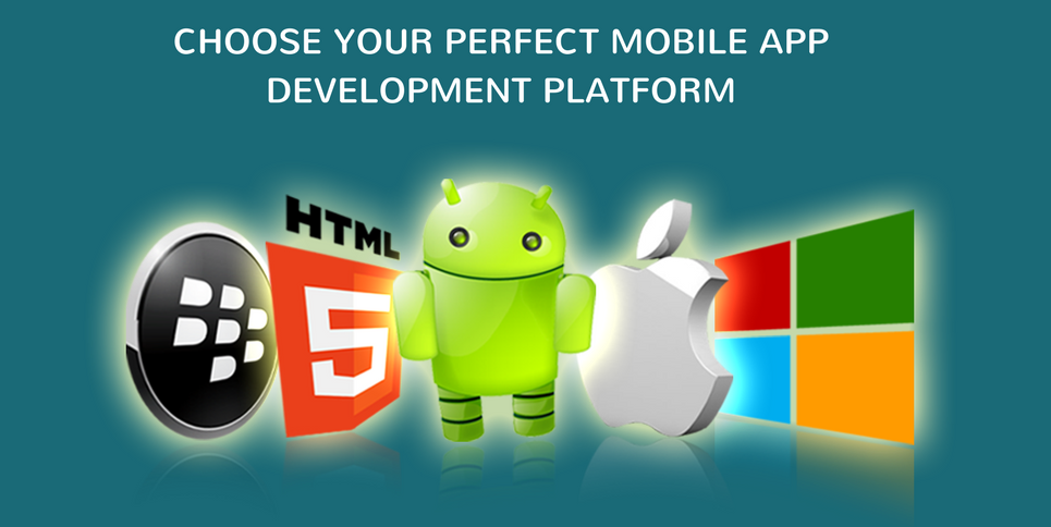 Top 6 Factors to Choose the Perfect Mobile Application Development Platform